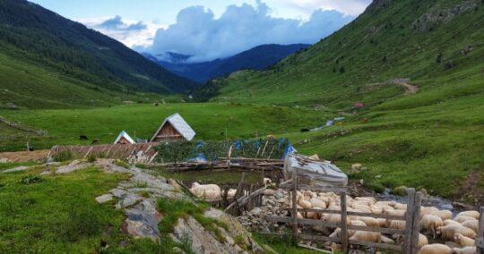 Peaks Of The Balkans - Trek Balkan -Doberdol